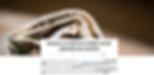 Screen Shot 2019-11-18 at 10.31.15 AM.pn