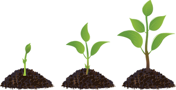 kisspng-seedling-sprouting-drawing-plant-5ad2c015a69470.4405628415237611736823.png
