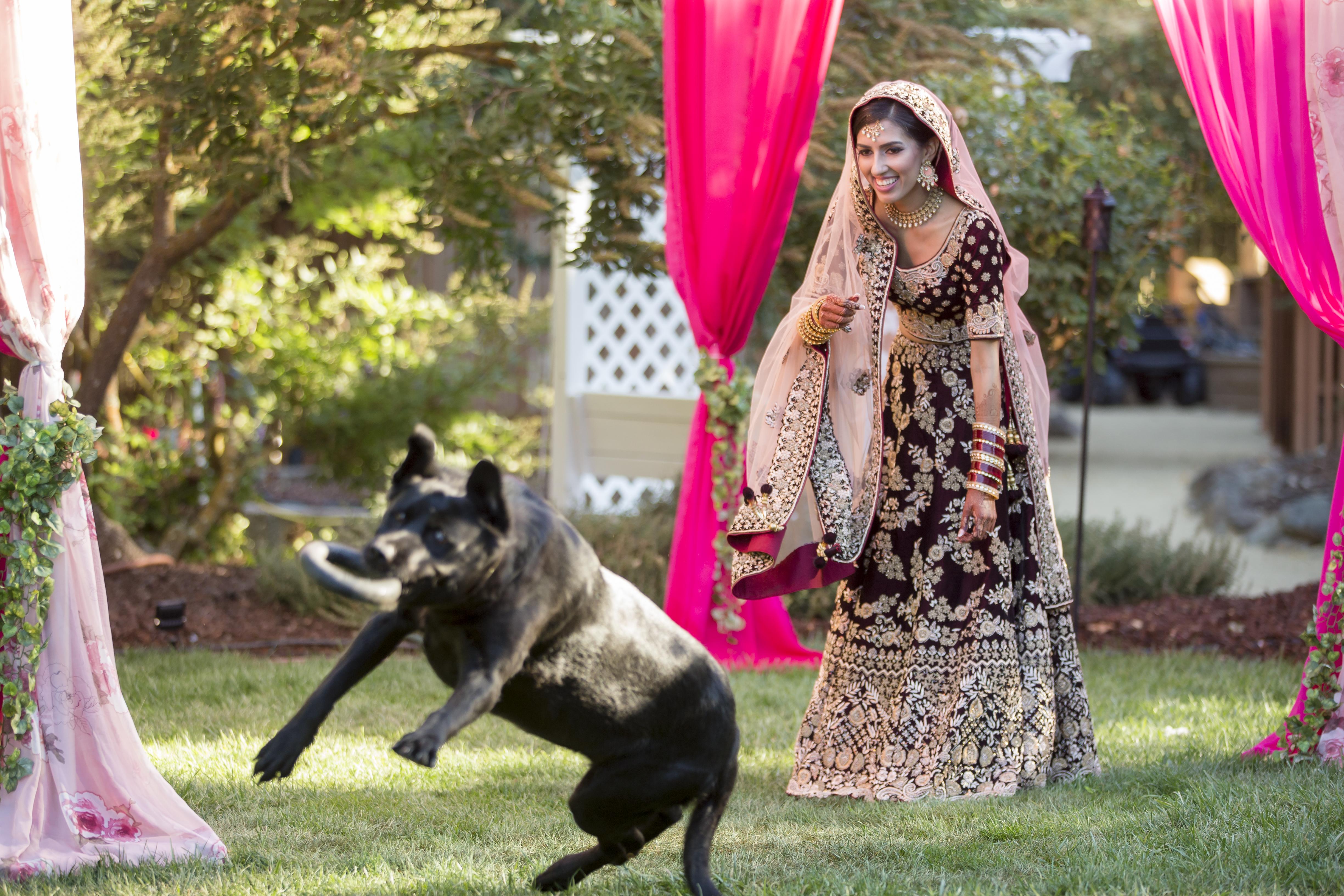 AngelAngela & Sumit - Home, Sangeet & Ceremony Decorations!a_Sumit_Wed_092