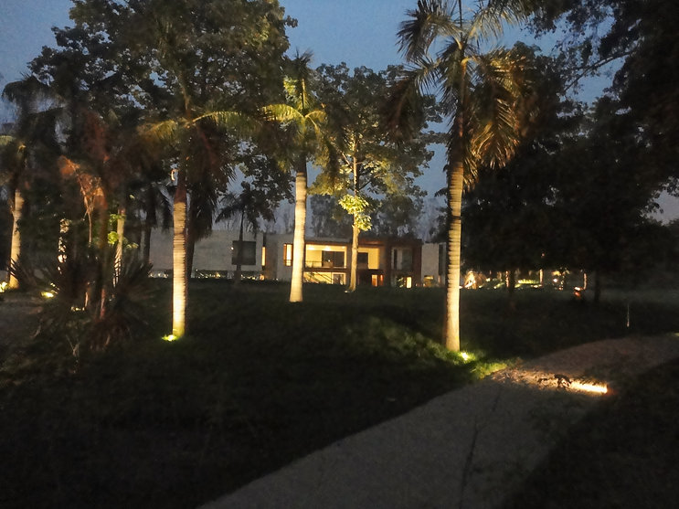 View of the Farmhouse through palm trees at night; Farmhouse in Kapashera in Delhi; Designscapes is one of the best Architectural, Interior Design and Project Management Consultancy Firms in India