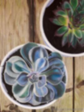 Succulents, acrylic on canvas, 60 x 80 c