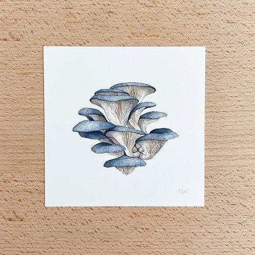 Chloe Jane Gray Mushroom Study Mini Print