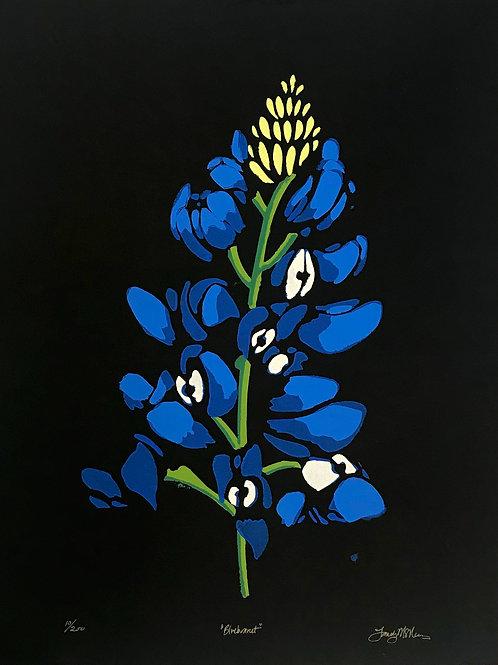 Landry McMeans Bluebonnet Print