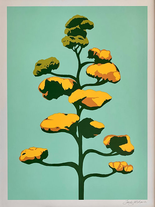 Landry McMeans Agave Bloom Print