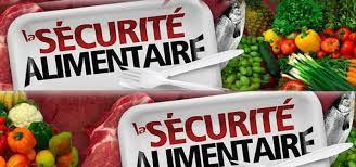 PENSER L'APRÈS-CRISE : POUR UNE SÉCURITÉ SOCIALE DE L'ALIMENTATION