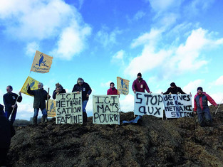 Produire de l'énergie plutôt que nourrir : comment le lobby du gaz « vert » transforme l'agriculture