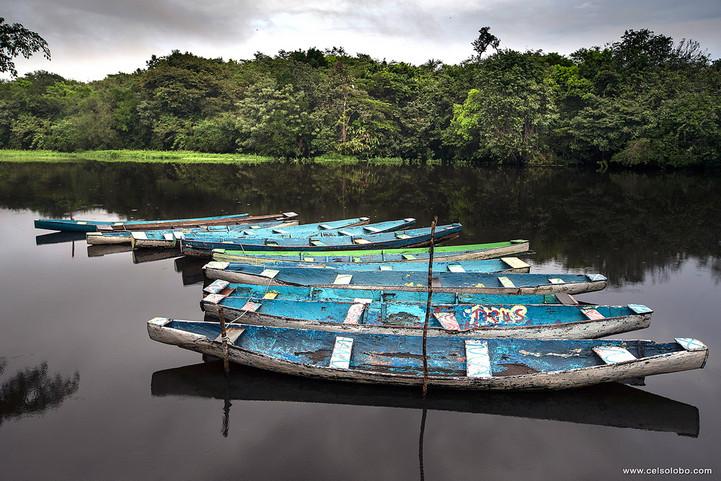 Celso Lobo - Canoas dos ribeirinhos.jpg