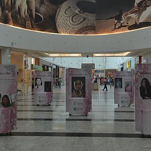 Expo - Mulheres que fazem o Pará