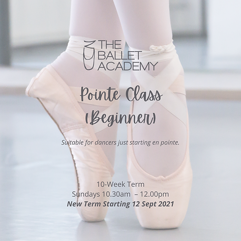 Pointe Class IG Post.png