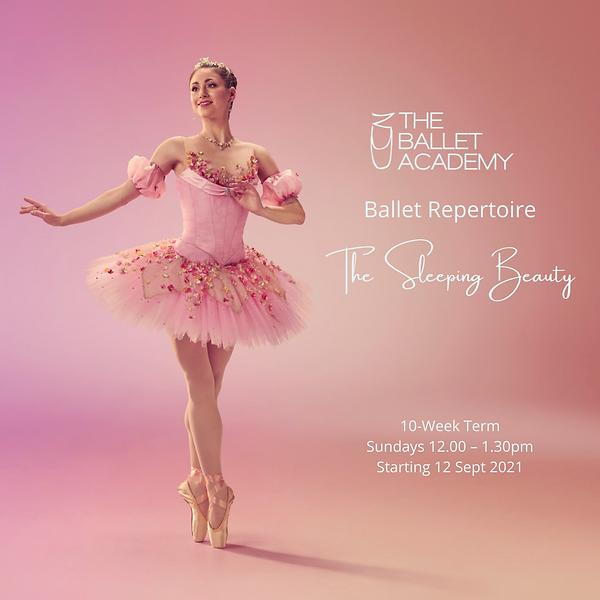 Ballet Rep Term 34 IG Post.png
