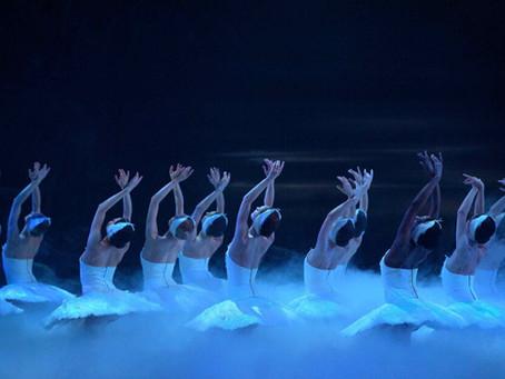 Repertoire Spotlight: Swan Lake