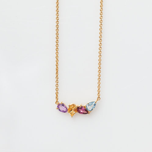 Collar Enredadera Rainbow .925