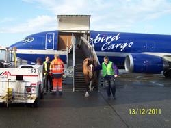 Bailie Landing in Belgium