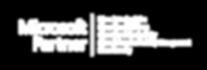 Logo Silver Partner.png
