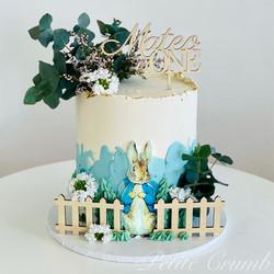 Peter Rabbit themed