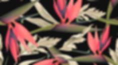 tropische Muster