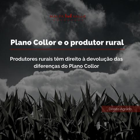 Produtores rurais têm direito à devolução das diferenças do Plano Collor