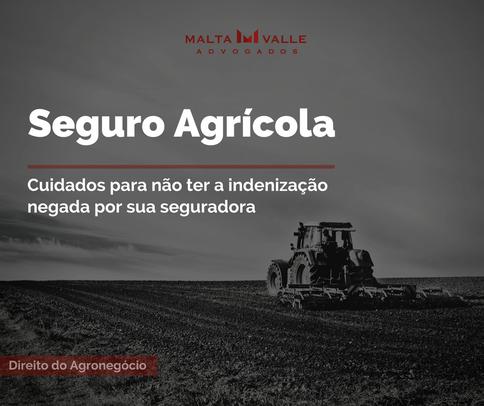 Seguro Agrícola: cuidados para não ter a indenização negada pela Seguradora