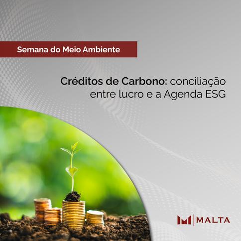 Créditos de Carbono: conciliação entre lucro e a Agenda ESG