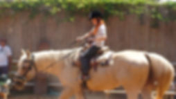 Horse therapy for children.jpg