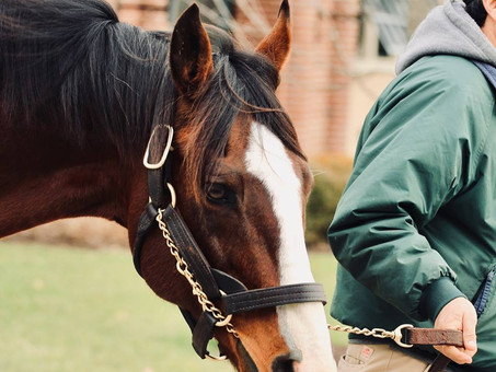 Union Rags: A Tale of Love
