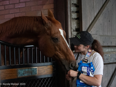 Christina & Curlin: The Unbreakable Bond Between A Groom & A Horse