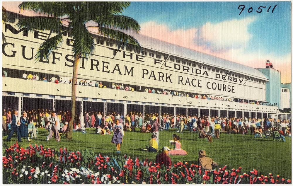 Gulfstream Park, Florida Derby, vintage postcard