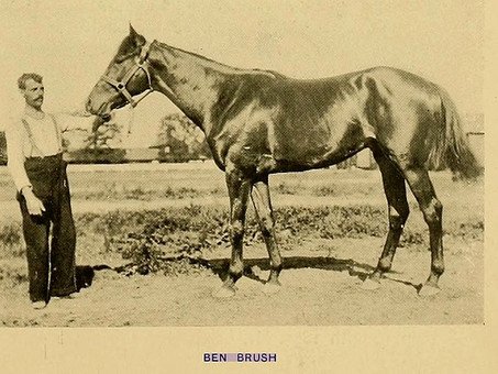 "Ben Brush: The First Horse To ""Wear The Roses"""