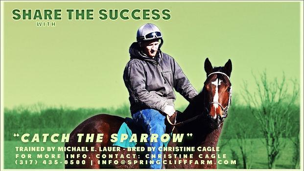 sparrowthumb.jpeg