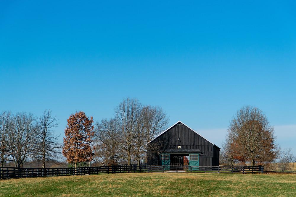 Mill Ridge Farm, Lexington Kentucky, Visit Horse Country tour