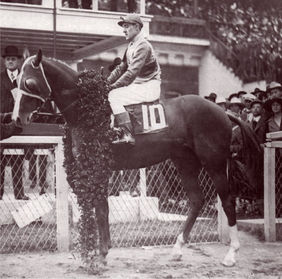 1917 Kentucky Derby winner Omar Khayyam, 1917 Champion Three Year Old, History