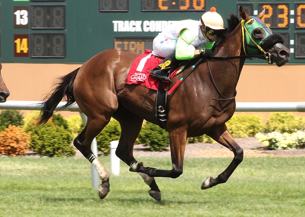 Lady Fog Horn wins the Florence Henderson Stakes at Indiana Grand, 2016.
