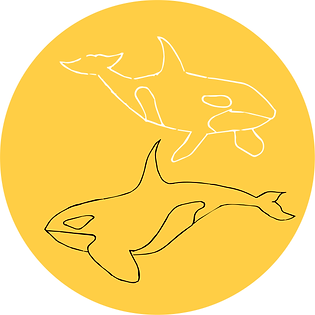 YelloWhales.png