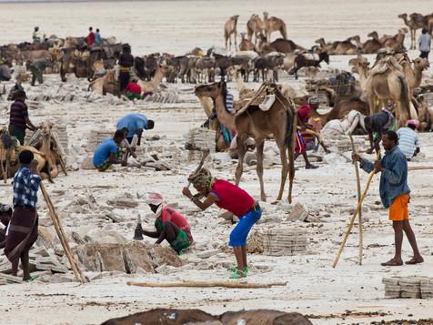#9 Ethiopia - Salt Mining