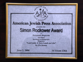 Simon Rockower Award