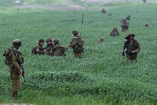 In the picture IDF soldiers in a green grass field