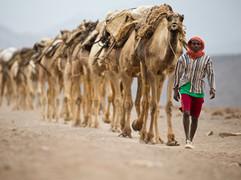 #15 Ethiopia - Salt Mining