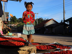 #15 Laos