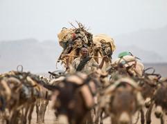 #17 Ethiopia - Salt Mining