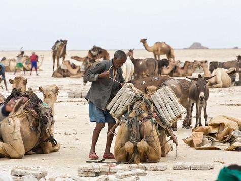 #2 Ethiopia - Salt Mining