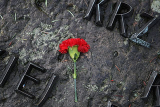 A pcture of a red flower on a stone monument in Auschwitz  concentration and extermination camps
