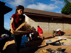#29 Laos