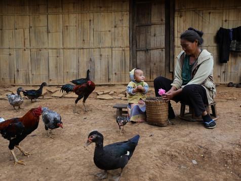 #21 Laos