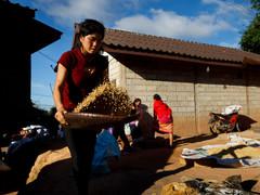 #16 Laos