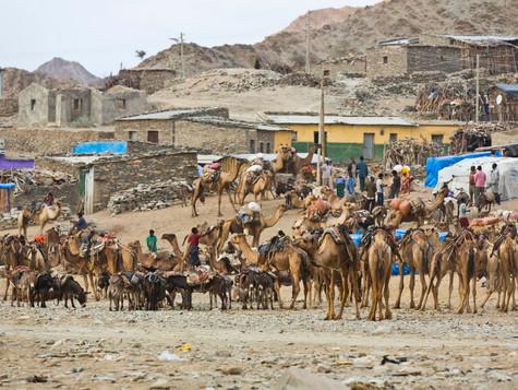 #18 Ethiopia - Salt Mining