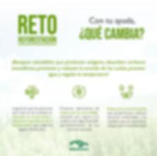 reto reforestacion, cdmxmuymatcha, muy matcha, matcha
