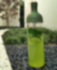 matcha kaori detox pepino gengibre hierbabuena vegano