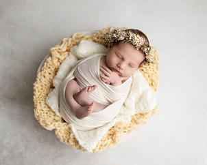 Nyfødtfotografering - Vårjente.