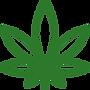 cannabis-leaf_edited.png