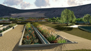 A centre of excellence for nature-based solutions